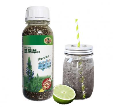 【亞積生技】瑪雅野生原種-鼠尾草籽(430g/罐)